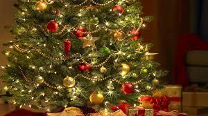 Feliz Navidad Frases Para La época Decembrina En Portugués